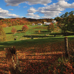 Brads-shot-fall-balli-farm
